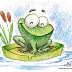 frog sapo ra lagoa lapis de cor color pencil jlima desenho
